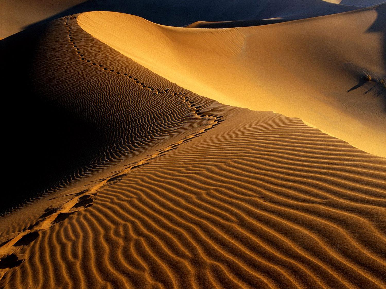 1500_header_desert_1